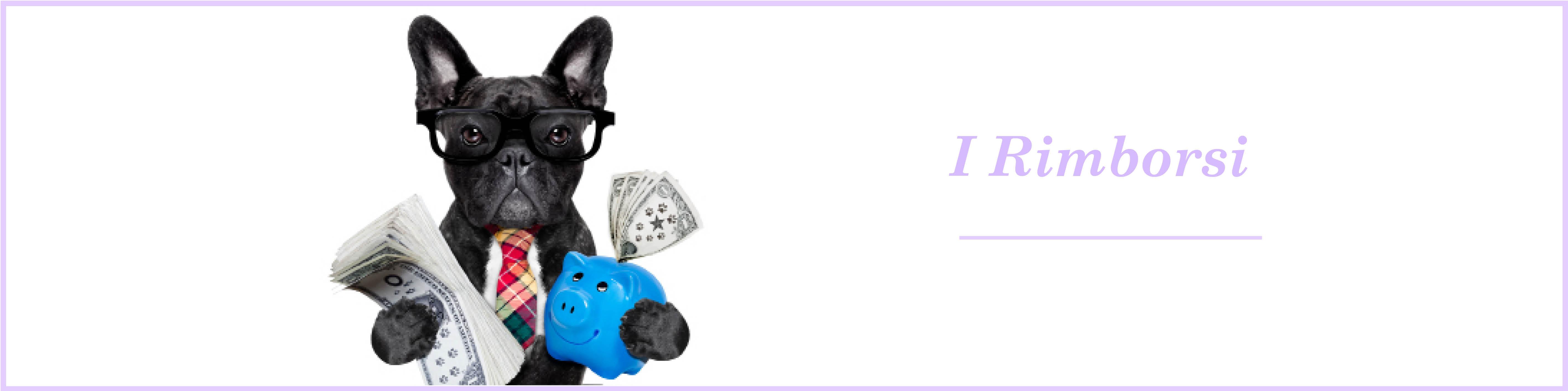 Rimborsi : esempi di rimborso assicurazione cane gatto