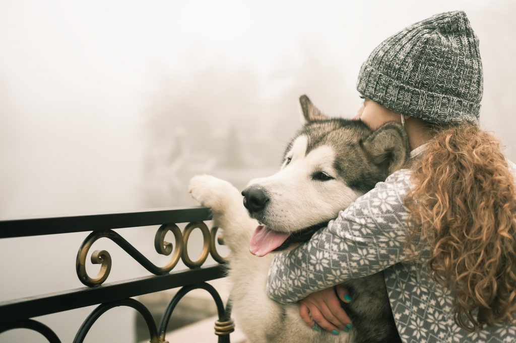 Cane pauroso : il mio cane ha paura di tutto