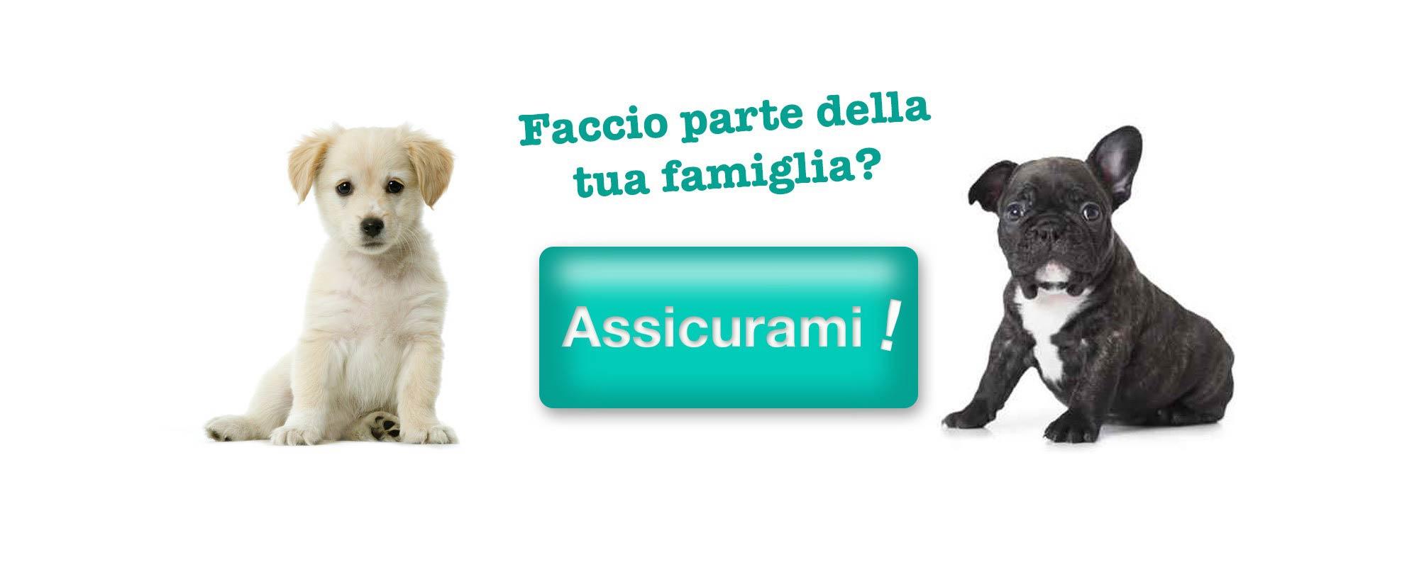 Assicurazioni animali domestici : fai un preventivo