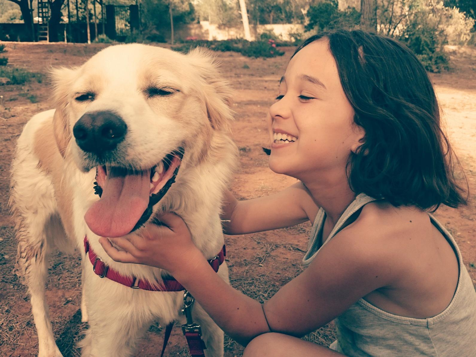 Linguaggio cani : comportamento dei cani