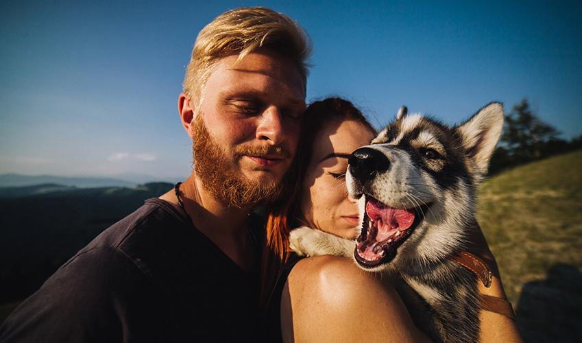 vacanze in montagna con il cane