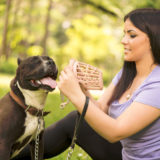 Come abituare il cane alla museruola? In quale caso utilizzarla e perché?