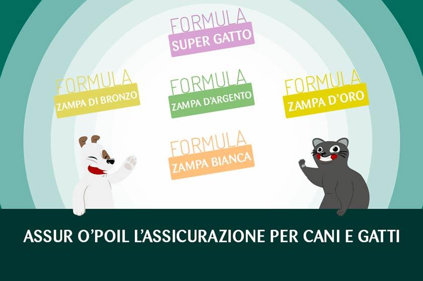 https://www.assuropoil.it/wp-content/uploads/polizza-animali-domestici-formule.jpg